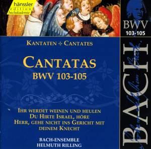 Bach - Cantatas Vol. 33