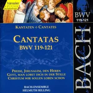 Bach - Cantatas Vol. 38
