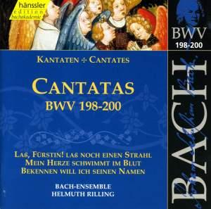 Bach - Cantatas Vol. 60