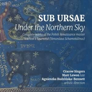 Sub Ursae