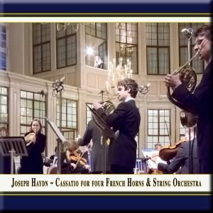 Haydn: Divertimento in D major, Hob.II:22