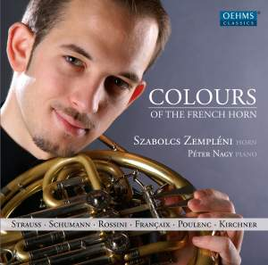 Colours of the French Horn
