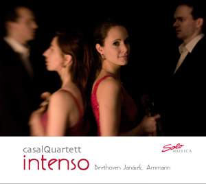 Intenso - Music Without Limits Product Image