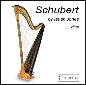 Schubert by Ieuan Jones