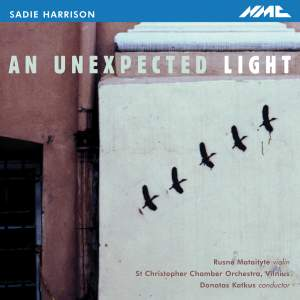 Harrison - An Unexpected Light