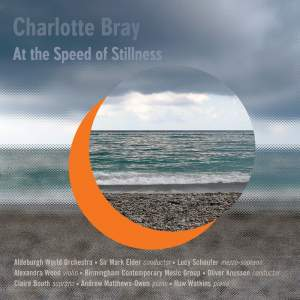 Charlotte Bray: At The Speed Of Stillness