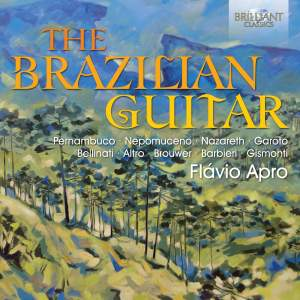 The Brazilian Guitar