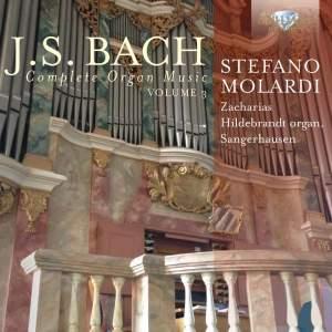 JS Bach: Complete Organ Music, Vol. 3