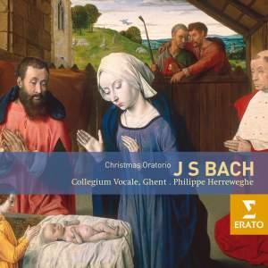 Bach, J S: Christmas Oratorio, BWV248 Product Image