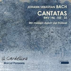 JS Bach: Cantatas 146, 103 & 33 Product Image