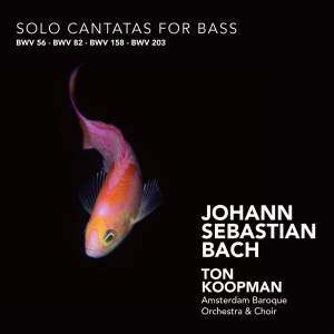 J S Bach - Solo Cantatas for Bass