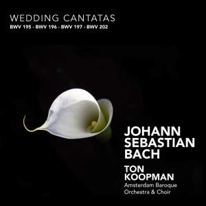 J S Bach - Wedding Cantatas