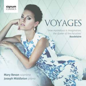 Voyages Product Image