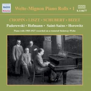Welte-Mignon Piano Rolls, Vol. 1 (1905-1927) Product Image