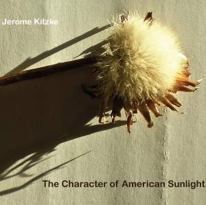 The Character of American Sunlight