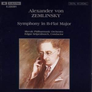 Zemlinsky: Symphony No. 2 in B flat major Product Image