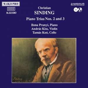 Sinding: Piano Trios Nos. 2 & 3