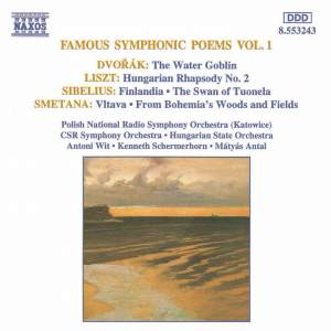 Famous Symphonic Poems Vol. 1 Product Image