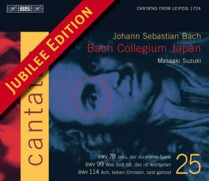 Bach - Cantatas Volume 25 Product Image