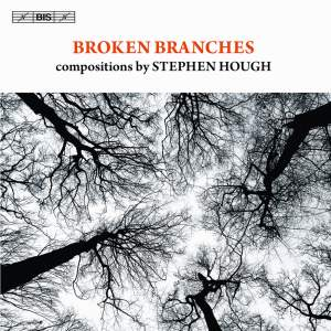 Broken Branches Product Image