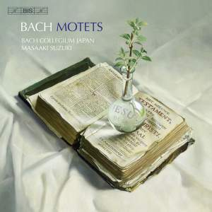 Bach - Motets Product Image