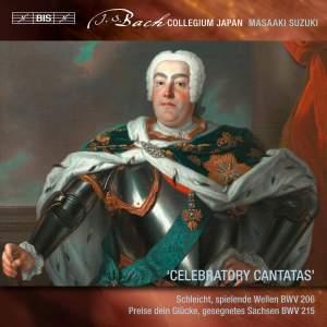 Bach - Secular Cantatas VIII Product Image