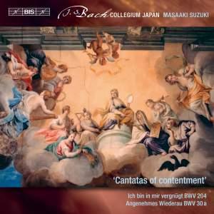 JS Bach: Secular Cantatas, Vol. 10
