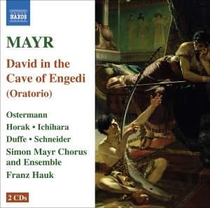 Mayr: David in spelunca Engaddi Product Image