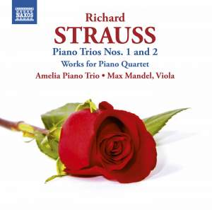 R Strauss: Piano Trios & Works for Piano Quartet Product Image