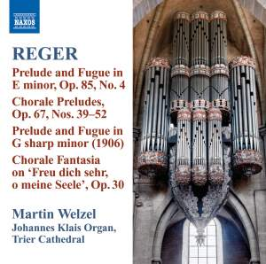 Reger - Organ Works Volume 10 Product Image