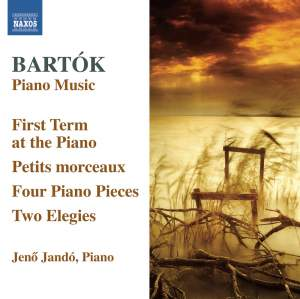 Bartók: Piano Music Volume 6 Product Image