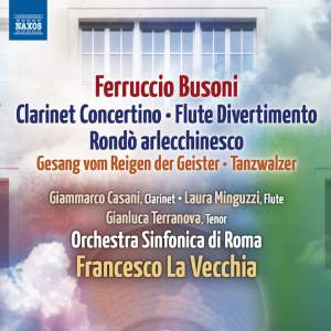 Busoni: Clarinet Concertino & Flute Divertimento Product Image