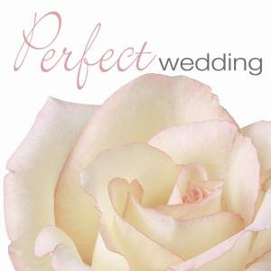 PERFECT WEDDING Product Image