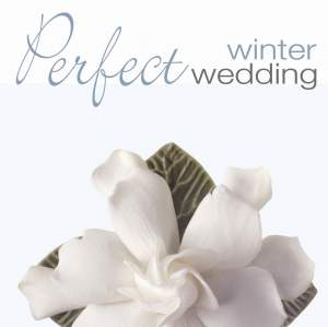 PERFECT WINTER WEDDING Product Image