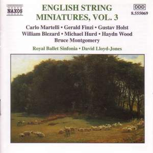 English String Miniatures, Vol. 3 Product Image