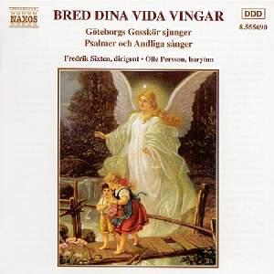 BRED DINA VIDA VINGAR Product Image
