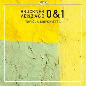 Bruckner: Complete Symphonies Volume 2