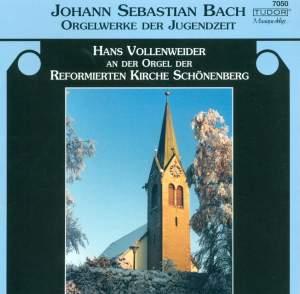 Bach: Orgelwerke der Jugendzeit
