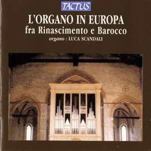 The Organ in Renaissance & Baroque Europe