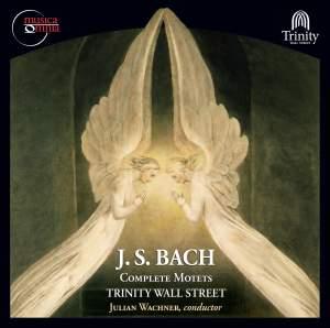 J.S. Bach: Complete Motets, BWV 118 & 225-230