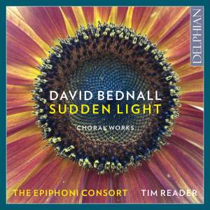 David Bednall: Sudden Light