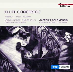 Flute Concertos Product Image