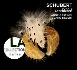 Schubert: Sonate Arpeggione D821