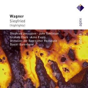 Wagner: Siegfried (highlights)
