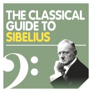 The Sibelius Experience