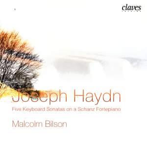Haydn: Five Keyboard Sonatas on a Schanz Fortepiano