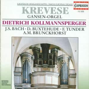 Europaische Orgellandschaften Krevese Gansen-Orgel