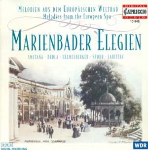 Marienbader Elegien Product Image