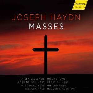 Haydn: Masses