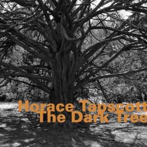 The Dark Tree (Live)